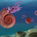 Illustration: ammonites in the ocean